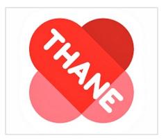 Thane | Litcom Client Project