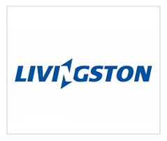 Livinston | Litcom Client Project