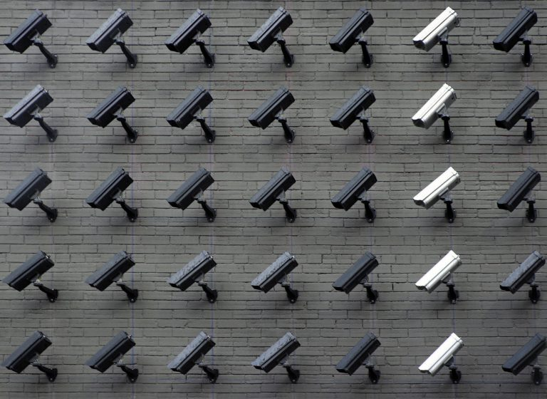 Data Privacy and Protection in the Organization - Safeguarding Your Customer Data