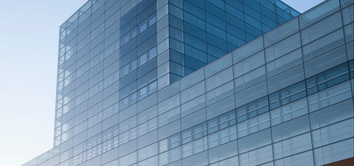 Making Sense of Executive Titles | The Interim vs Fractional CIO