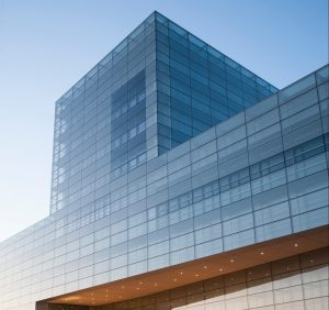 Making Sense of Executive Titles   The Interim vs Fractional CIO